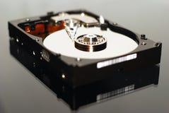 Festplatte 40GB Lizenzfreie Stockbilder