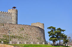 Festung in Skopje stockfotos
