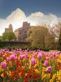 Festung und Tulpen lizenzfreie stockbilder