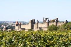 Festung von Carcassonne und von Weinberg Stockbild