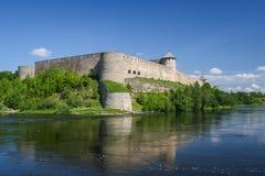 Festung von Ivangorod, Russland Stockbild