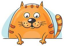 Fet katt som ut kikar Arkivbild