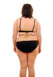 fet kvinna Arkivfoto