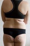 fet kvinna Arkivbild