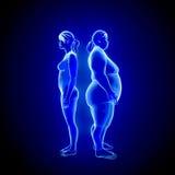 Fet och tunn kvinna stock illustrationer