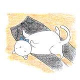 Fet rolig vit katt som ligger på den svarta byxan royaltyfri illustrationer