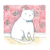 Fet rolig vit katt som sitter nära den röda väggen royaltyfri illustrationer
