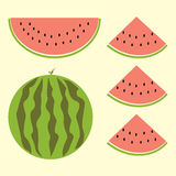 Fet of watermelon with sign, flat style. Cartoon watermelon set in vector EPS10. Whole watermelon, small slice whole Stock Images
