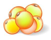 Feta celler stock illustrationer