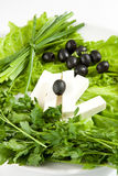 Feta cheese with black olives Stock Image