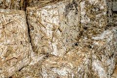 Feta cheese blocks straw covered Stock Photo