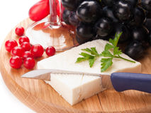 Feta cheese and cranberries Royalty Free Stock Image