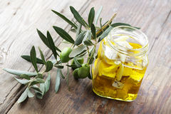 Feta cheese and olive branch Stock Image