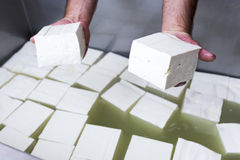 Feta cheese production cubes Royalty Free Stock Image