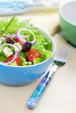 Feta cheese salad Royalty Free Stock Photo