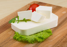 Feta cheese. Traditional Greek Feta cheese with salad leaves Stock Photos