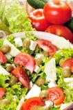 Feta-Käse Salat stockbilder