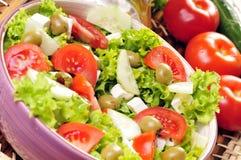 Feta-Käse Salat stockfotos