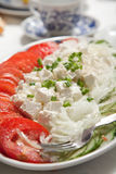 Feta & tomatoes salad. Colorful salad made with feta, tomatoes, cucumbers and onions Stock Photography