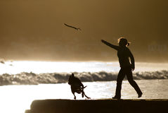 Fetch. Woman throwing stick for dog stock image