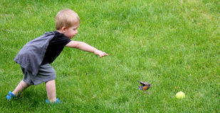 Fetch!. Small child tries to get a baby robin to fetch a ball stock photos
