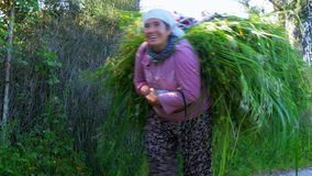 FETHIYE, TURCHIA MAGGIO 2015: Foglie di trasporto della donna locale indietro