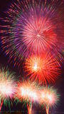 Fetival Nobi (Noubi) groot vuurwerk Stock Foto's