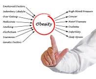 Fetma - orsaker och effekter fotografering för bildbyråer
