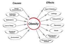 Fetma: orsaker och effekter vektor illustrationer