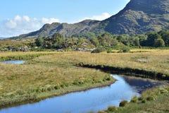 Fetor doliny w Killarney Obraz Stock