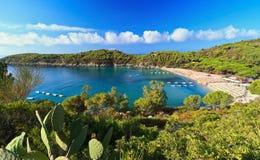 Fetovaia bay - Elba island. Summer view of Fetovaia bay in Elba island, Italy royalty free stock photos