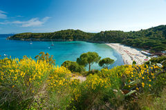 Fetovaia beach, Elba island. Italy. stock photography