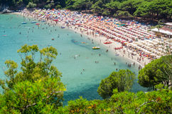 Fetovaia, Isola-d'Elba, (Italien) Lizenzfreie Stockfotografie
