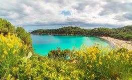 Fetovaia-Strand auf Elba-Insel, Toskana, Italien stockfoto