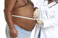 Fett Lizenzfreies Stockfoto