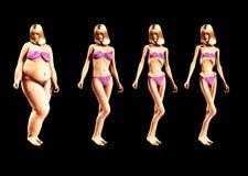 Fett som gör 2 tunnare Arkivfoto