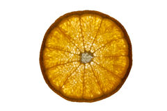 Fetta arancio Fotografia Stock