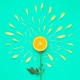 Fetta arancio con il petalo del fiore su fondo verde fotografia stock libera da diritti