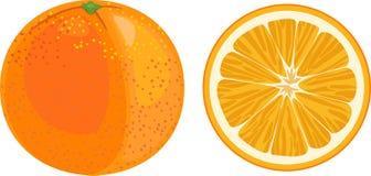 Fetta arancio ed arancio su fondo bianco Fotografia Stock Libera da Diritti