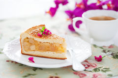 Fetta casalinga della torta di mele Immagini Stock