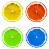 Fetta colorata del limone fotografia stock libera da diritti