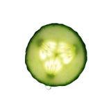 Fetta del cetriolo con goccia dell'acqua Fotografia Stock Libera da Diritti