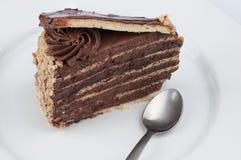 Fetta del dolce di cioccolato con la guarnizione e il cho lucidi dello sciroppo del cioccolato Immagini Stock Libere da Diritti