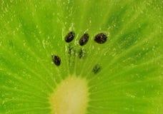 Fetta del Kiwi Fotografia Stock