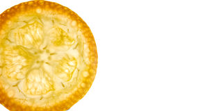 Fetta del kumquat fotografia stock