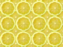 Fetta del limone Fotografie Stock