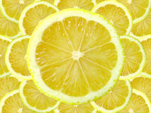 Fetta del limone fotografia stock