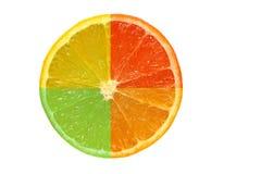fetta della frutta da quattro frutta differenti fotografia stock libera da diritti