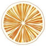 Fetta di arancio Fotografie Stock