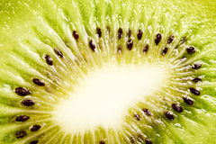 Fetta di kiwi Immagine Stock Libera da Diritti